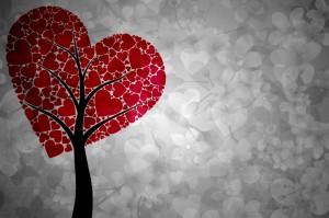 Loving-Kindness1-300x199